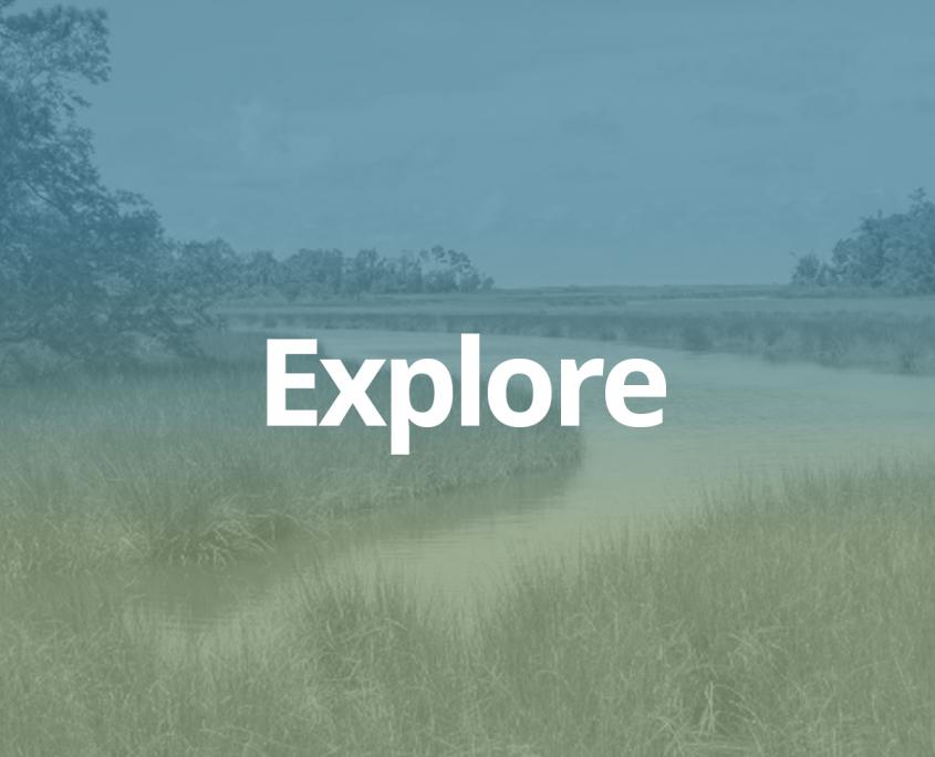 explore copy